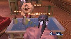 딜교왕 차우차우